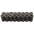 Blackworks Valve Springs