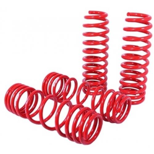 Blackworks Acura RSX Lowering Springs BWLS - Acura rsx lowering springs
