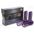 D2 Racing Chevy Cobalt Lowering Springs (05-10) D2-SPCH01